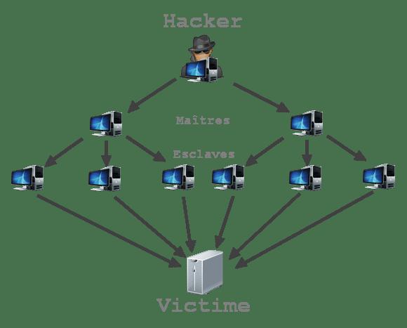 ddos-attack-maitres-esclaves-victime-schema