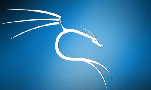 Comment installer Kali Linux sur Windows ? (Pour les débutants)