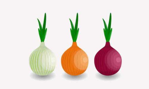 Les 10 sites .onion les plus visités au darknet