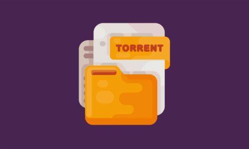Deux clics suffisent pour télécharger des fichiers Torrent